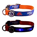 Dog-E-Glow Boise State University Broncos Lighted LED Dog Collar, Medium, 10-Inch by 15-Inch