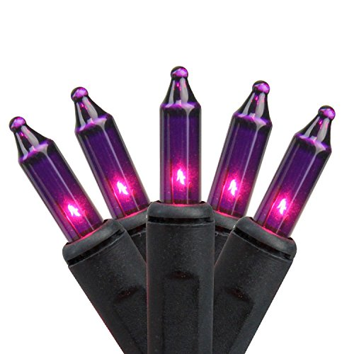 Holiday Essentials Purple Halloween Mini Lights with Black Wire - Indoor / Outdoor Use - UL Listed - Set of 100