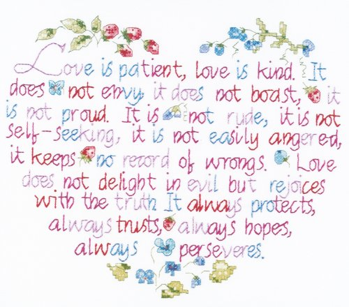 Janlynn Stamped Cross Stitch Kit, Love is Patient ()