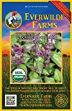 Everwilde Farms - 1000 organic Cinnamon Basil Herb Seeds - Gold Vault Packet