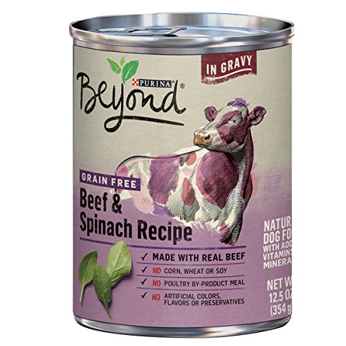 Purina Beyond Grain Free Natural, Beef & Spinach Recipe In Gravy Canned Dog Food, 12.5 Oz, Case Of 12