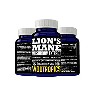 Lion's Mane Mushroom Extract Capsules Increase Neurogenesis, Reduce Anxiety, Enhance Neurological Connections - Nootropic for Enhancing Mental Performance by WodTropics