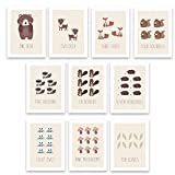 Counting Cards, Woodland Nursery Decor, Set of Ten 5x7 Unframed Prints, Boho Decor, Wall Decor Kids, Hedgehog, Squirrel, Owl, Deer Beaver, Fox, Bear Raccoon, Baby Registry, flash card wall decor