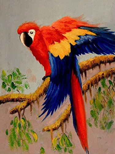 Picasso Blue Period Costume (Oil Painting 'a Colorful Parrot' Printing On Perfect Effect Canvas , 16x21 Inch / 41x54 Cm ,the Best Garage Gallery Art And Home Decor And Gifts Is This Cheap But High Quality Art Decorative Art Decorative Prints On Canvas)