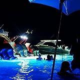 Lumitec SeaBlaze X2 Underwater