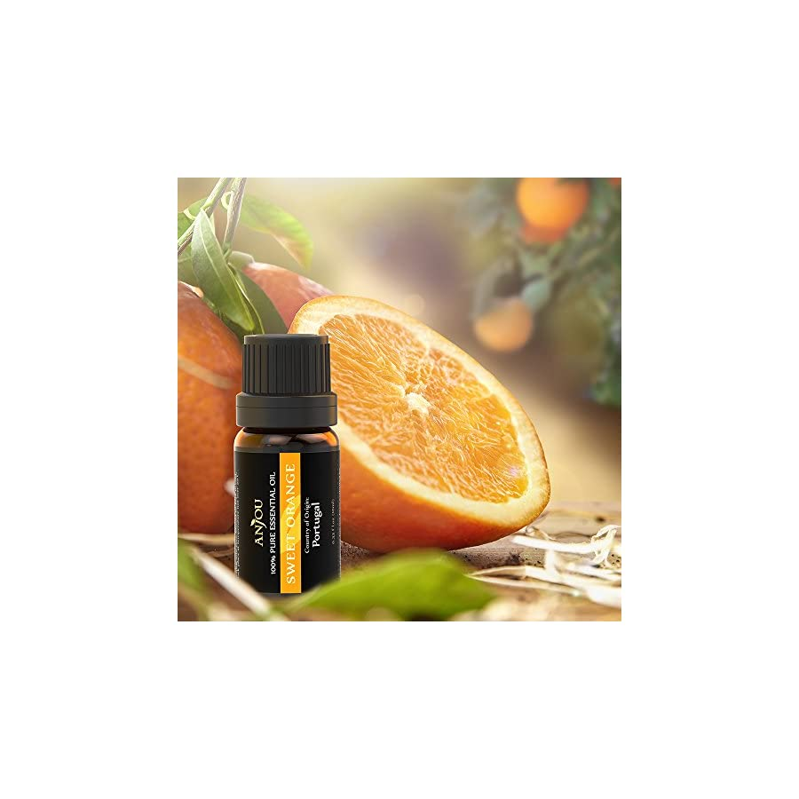 Essential Oils Set Anjou 100 Pure Top 6 Aromatherapy Oils Basic Sampler Gift Kit, 6/10 ml (Lavender, Tea Tree, Eucalyptus, Lemongrass, Orange, Peppermint), Therapeutic grade