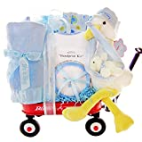 Stork Delivery Baby Boy Gift Set in a Miniature Radio Flyer Wagon