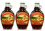 Pioneer Valley Gourmet Strawberry Rhubarb Fancy Syrup 11.5 oz. - 3 pack
