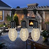 48 Foot PS58 Edison Outdoor String Lights - Suspended - Commercial Grade String Lights - Backyard Garden Gazebo – Cafe Market String Lights – Vintage Patio String Lights – 15 PS58 Bulbs
