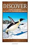 Animal Locomotion the Hoppers Flopper Jumpers - Discover, Discover Press, 1499366418