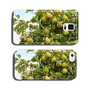 Rotten spots on fruit cell phone cover case Samsung S5