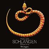 Schlangen - Serpentine