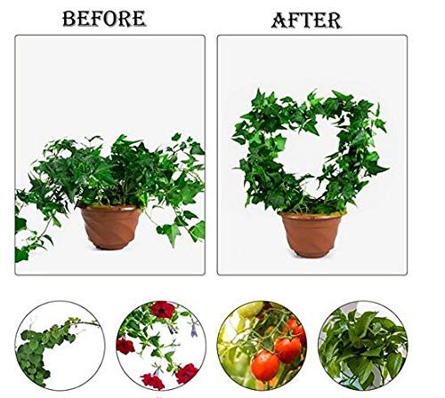 Woaills Home Heart-Shaped Plant Support Frame, Anti-Rust Black Coating Vine Frame, Metal Wire Decorative Ring, Plant Climbing Frame, Used for Retro Potted Plant Stems and Vine Decoration (2PCS)