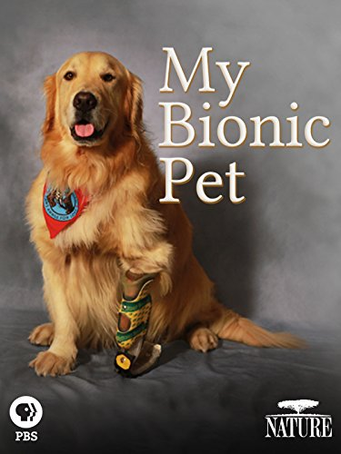 My Bionic Pet (Pet Science Dog School)