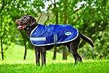 Weatherbeeta Parka 1200D Dog Coat - 16' - Navy/grey/white