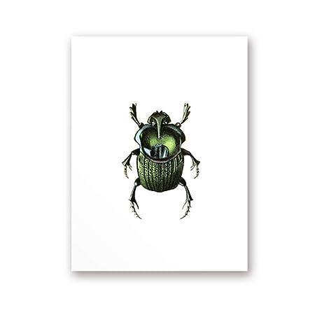 ZMK-720 Escarabajo Verde Imprimir Lienzo Pintura Imagen ...