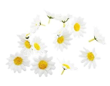 Narrenkiste K87392844 Weiß Deko Blumen Margeriten Im Beutel
