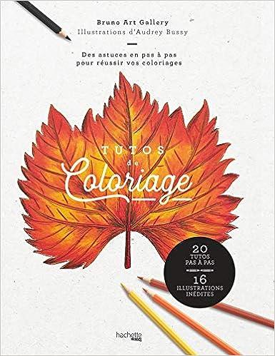 Coloriage Adulte Tuto.Tutos De Coloriages Amazon Fr Bruno Viale Audrey Bussi Livres