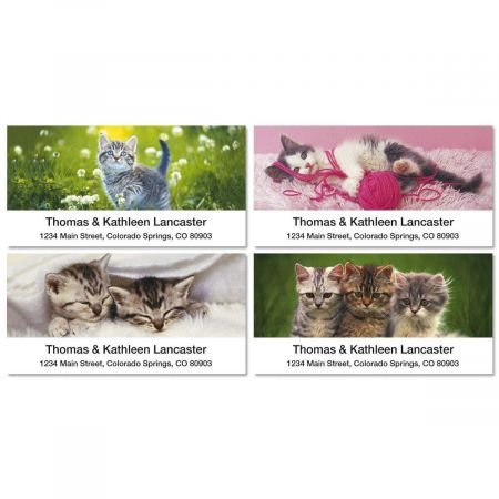 Kitten Address Labels - Cuddly Kittens Personalized Return Address Labels- Set of 144, Large Self-Adhesive, Flat-Sheet Labels (4 Designs) By Colorful Images