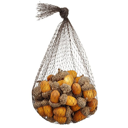 5.5'' Artificial Bagged Acorn Assorted -Orange (pack of 12) by SilksAreForever