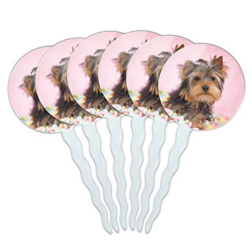 Easter Egg Candy Cups - Graphics and More Yorkie Yorkshire Terrier Dog Candy Eggs Easter Cupcake Picks Toppers Decoration Set of 6
