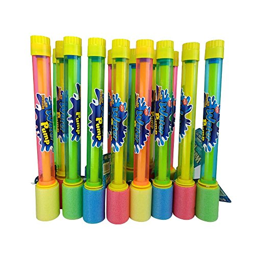 Xploretoys 24 Pack Water Blaster 11.75