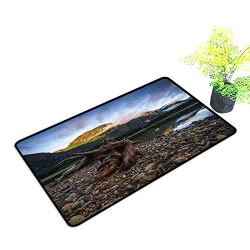 - Zmstroy Non-Slip Door mat Driftwood Landscape of a Mountain Lake and Cloudy Sky Driftwood on Rocky Shoreline W35 xL59 Non-Slip Door mat pad Machine can be Washed Blue and Brown