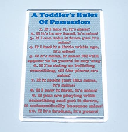 Awesome Toddler Rules Of Possession   Itu0027s Mine!u0027 Novelty/Funny Fridge Magnet