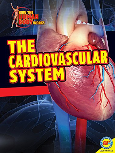 The Cardiovascular System  How The Human Body Works