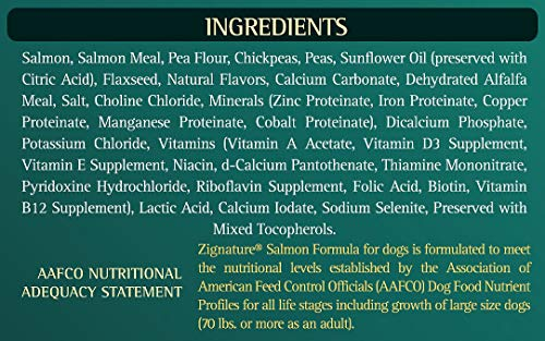 51yBF3p8bGL - Zignature Salmon Formula Dog Food