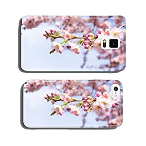 cherry blossoms in spring cell phone cover case iPhone6 Plus