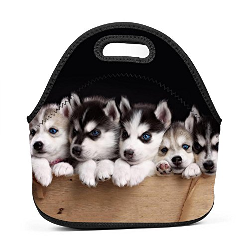 Baby Husky Dogs Lunch Bag Portable Bento Pouch Lunchbox Baby Bag Multifunction Satchel Handbag for Outdoor Tour School Office Picnic - Jill Satchel