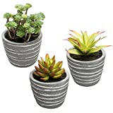 MyGift Miniature Faux Succulent Plants in Striped Cement-Gray Planters, Set of 3