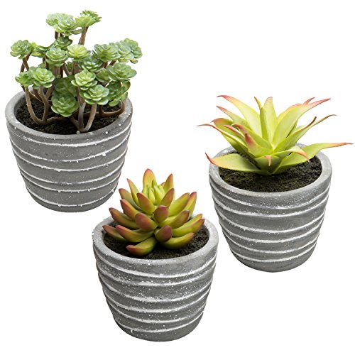 MyGift Miniature Faux Succulent Plants in Striped Cement-Gray Planters, Set of 3 by MyGift