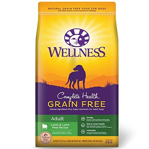 Wellness Complete Health Natural Grain Free Dry Dog Food, Lamb, 24-Pound Bag