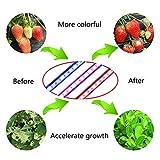 Growatt 60w Grow Led Tri Head Timing LED Grow Light