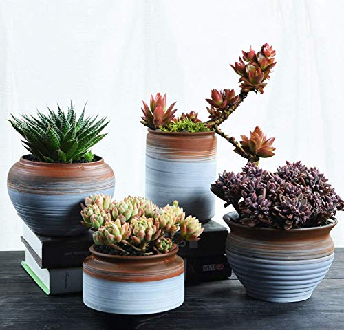 Lxynb Succulent Plant Containers,Painted Ceramic Flower Pot,Set of 4 Pack Planter pots Garden Outdoor Indoor-F 11x11x9cm(5x5x4in)