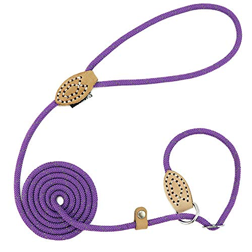 Grand Line Reflective Climbing Rope Slip Lead Pets Leash for Small, Medium, Large and Extra Heavy Dogs and Cats - 5 Ft Long
