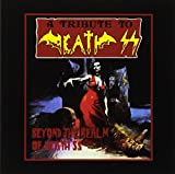 Beyond the Realm of Death S.S.-Tribute t...