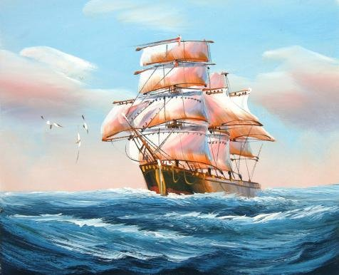 ['A Sailing Ship With Sea Gulls On The Blue Ocean For Home Decor' Oil Painting, 16x20 Inch / 41x50 Cm ,printed On Perfect Effect Canvas ,this Imitations Art DecorativeCanvas Prints Is Perfectly Suitalbe For Bathroom Decor And Home Decor And Gifts] (Baby Dormouse Costume)