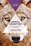 Animal Cognition: Evolution, Behavior and Cognition