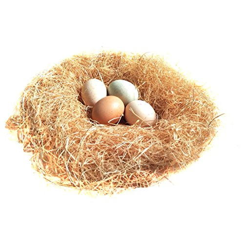 51yBV97gWzL - Bwogue 100g/3.5oz Natural Grass Nesting Pads for Chicken Hens Birds Nest Bedding