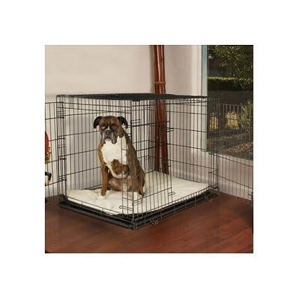Amazon Petco Premium 2 Door Dog Crate 48 L X 30w X 32h Xx