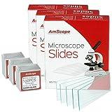 Cb Microscopes Review and Comparison