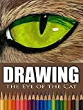 Clip: Drawing the Eye of the Cat