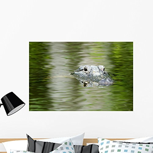 Wallmonkeys American Alligator Beautiful Water Wall Mural Peel and Stick Graphic (36 in W x 24 in H) (Submerged American Alligator)