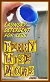 Laundry (Penny Wise Moms - Laundry Detergent For Less Book 1)