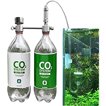 Amazon com : Rhinox DIY Pressurized CO2 System, CO2