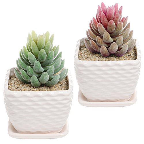 Nesting Flower Pots (4.3 Inch Set of 2 off-White Wavy Coil Design Ceramic Succulent Planter Flower Pot w/ Drainage Plate)