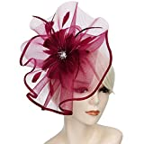 Acecharming Fascinators for Women, Feather Sinamay Fascinators with Headbands Tea Party Pillbox Hat Flower Derby Hats(Large Size Burgundy)
